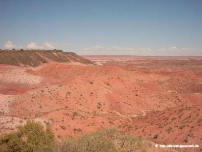 Flagstaff – Petrified Forest NP – Williams