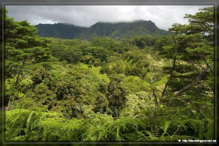 Kauai Teil 2