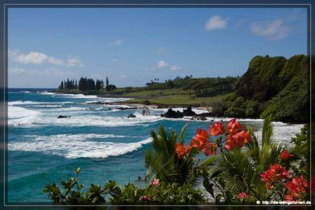 Maui Teil 3