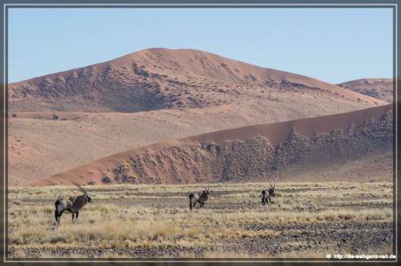 Namtib Desert Lodge – Sesriem