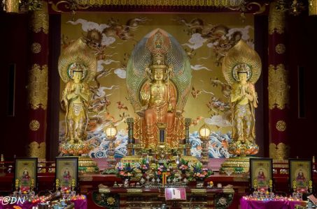 20150104-132406-singapore---buddha-tooth-relic-temple-and-museum 16536473502 O