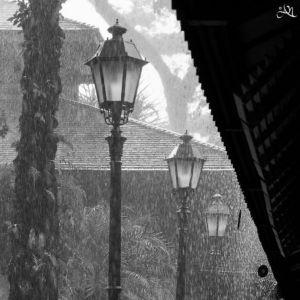 20150107-132304-rain 16944980922 O