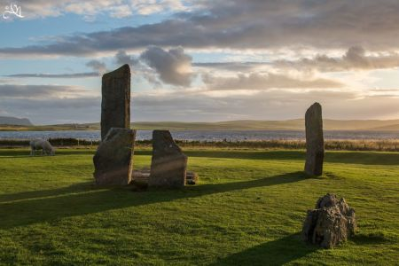 Muir of Ord - Orkney