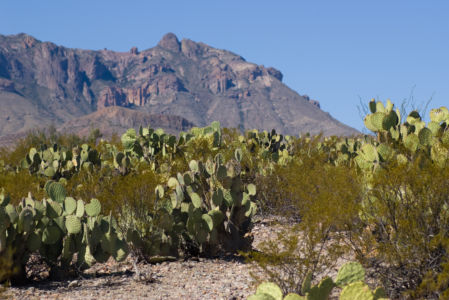 Marathon – Big Bend NP